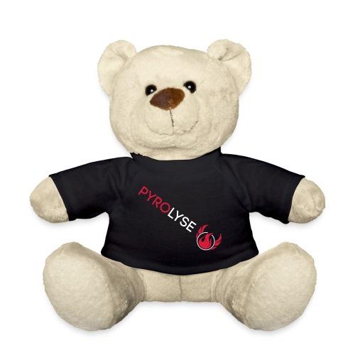 Pyrolyse Schriftzug Logo - Teddy