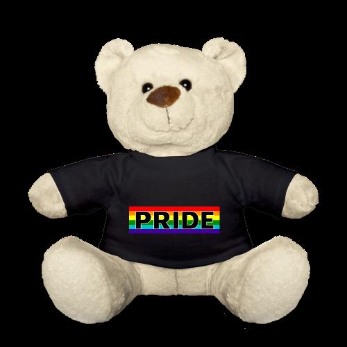 Gay pride rainbow vlag met de tekst Pride - Teddy