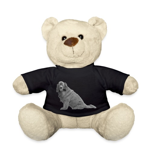 newfoundland - Teddybjørn