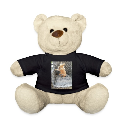 Ninou - Teddy