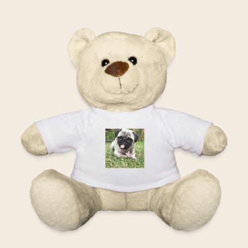 Mops Wiese - Teddy