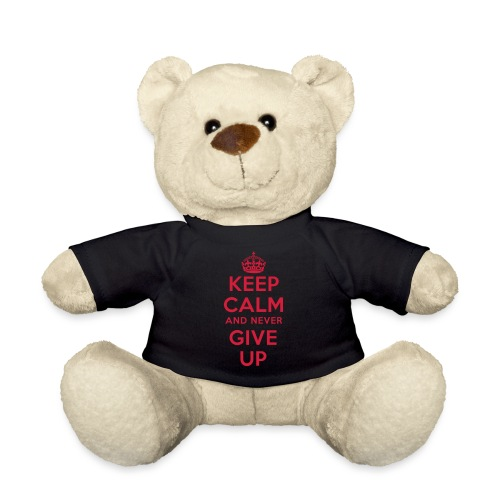 keep calm and never give up - Teddy