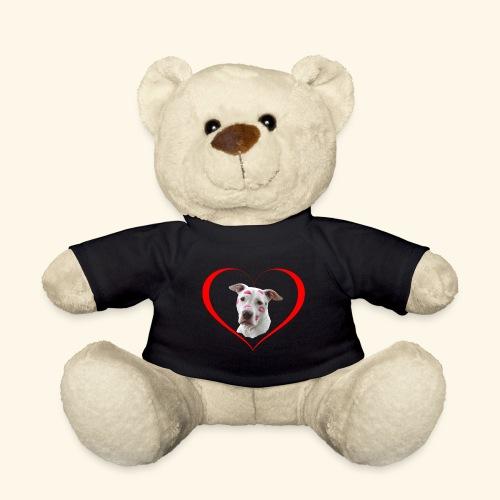 weisser Pit bull Herz Kuss - Teddy