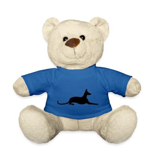Podenco - Teddy