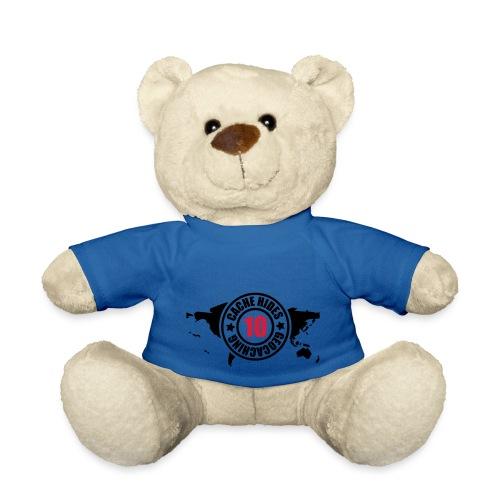 cache hides - 10 - Teddy