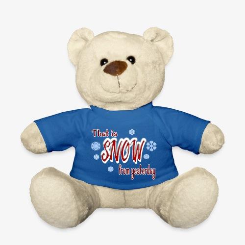 Snow from yesterday - Teddy
