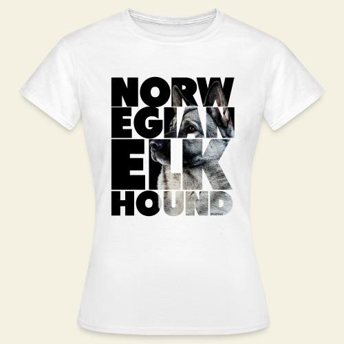 NASSU Norjanharmaa 2 - Naisten t-paita
