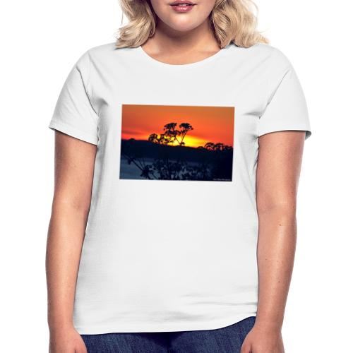 Paul Dillon Photography - Women's T-Shirt