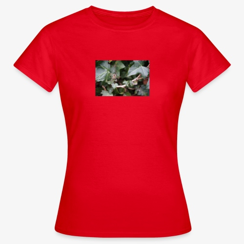 Incy Wincy Spider - Women's T-Shirt