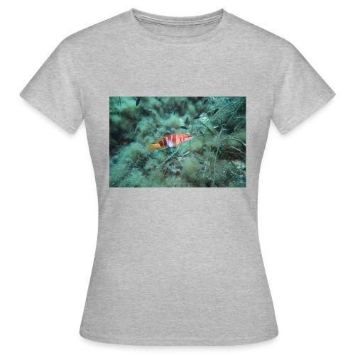 D0920038 ECD5 4545 A903 007D901BFA72 - Frauen T-Shirt