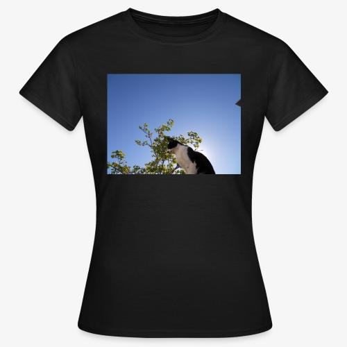 DSCN7881 - Camiseta mujer
