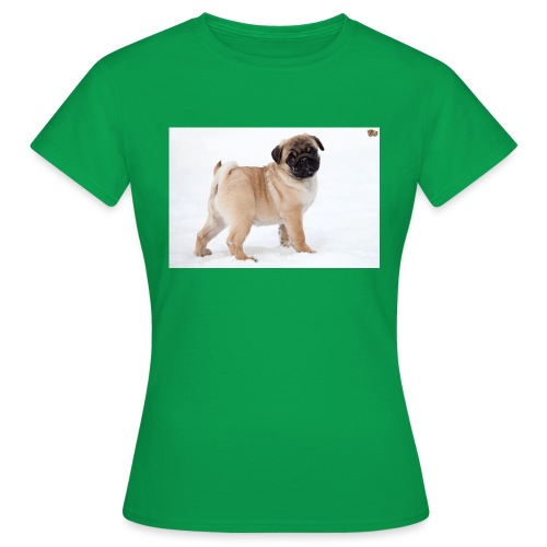 walker family pug merch - Women's T-Shirt
