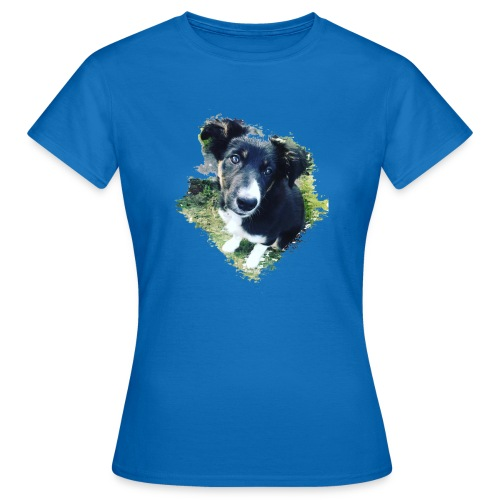colliegermanshepherdpup - Women's T-Shirt