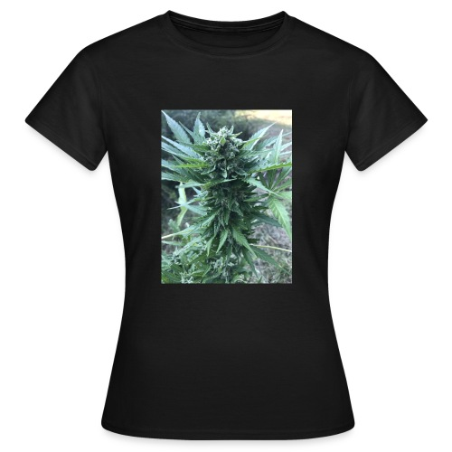 Bud Cannabis - Frauen T-Shirt