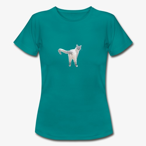 snow1 - Women's T-Shirt