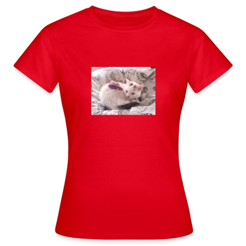 CAT SURROUNDED BY MICE AND BUTTERFLIES. - Women's T-Shirt