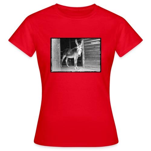 Zickenstube Esel - Frauen T-Shirt