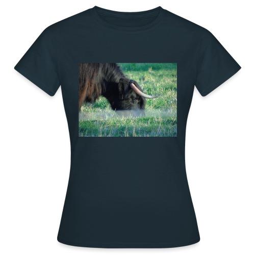 A highland cow - Women's T-Shirt