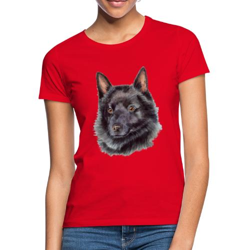 schipperke - M - Dame-T-shirt