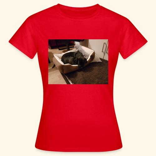 Hund im Hundekörbchen - Frauen T-Shirt
