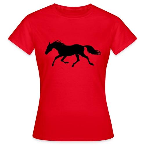 Cavallo - Maglietta da donna