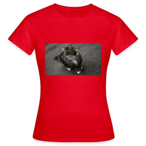 Mummon naapurin kissa - Naisten t-paita