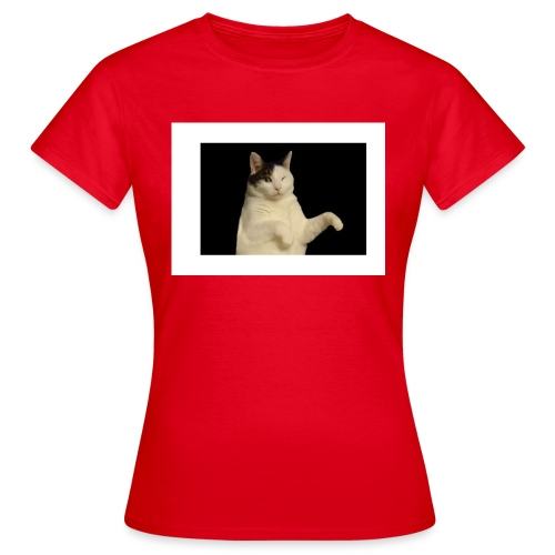 Kitty cat - Vrouwen T-shirt