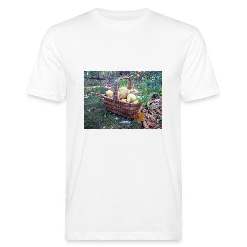 Quitten-Korb - Männer Bio-T-Shirt