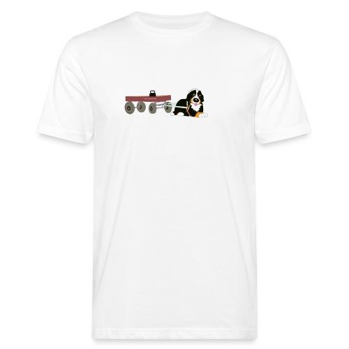 bernerdrag hona - Ekologisk T-shirt herr