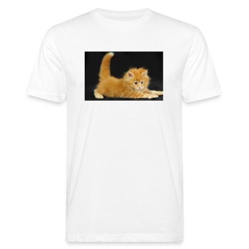 gatto - T-shirt ecologica da uomo