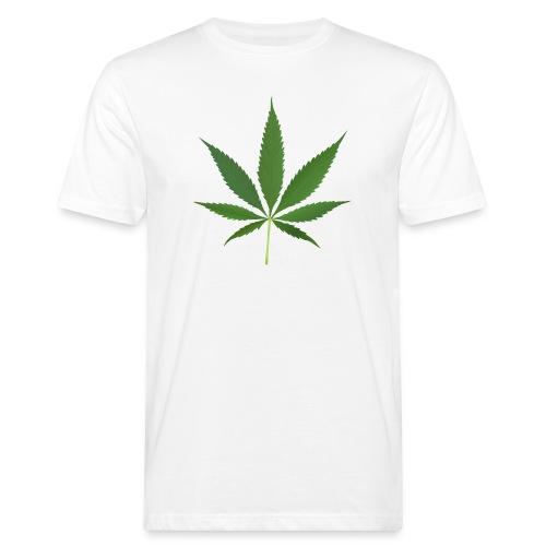 2000px-Cannabis_leaf_2 - Organic mænd
