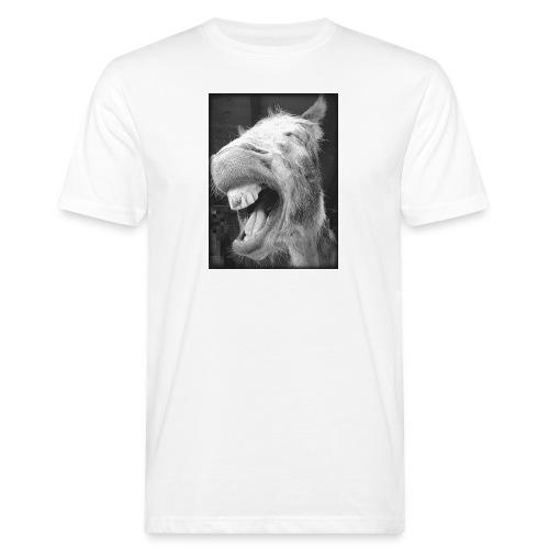 lachender Esel - Männer Bio-T-Shirt