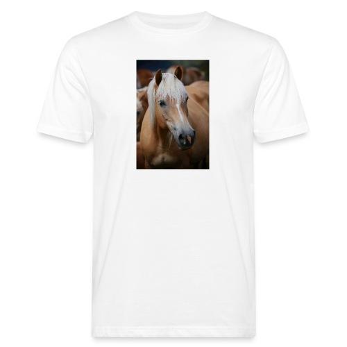 Haflinger - Männer Bio-T-Shirt