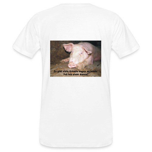 Gründe vegan zu leben - Männer Bio-T-Shirt