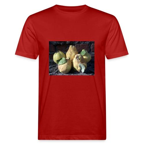 Quitten - Männer Bio-T-Shirt