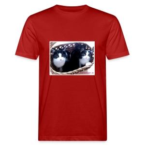 Katzenkorb - Männer Bio-T-Shirt