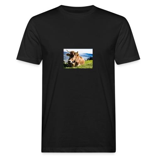 allgau 2232231 1920 - Männer Bio-T-Shirt