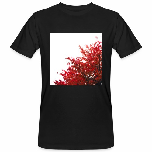Composed - Men's Organic T-Shirt