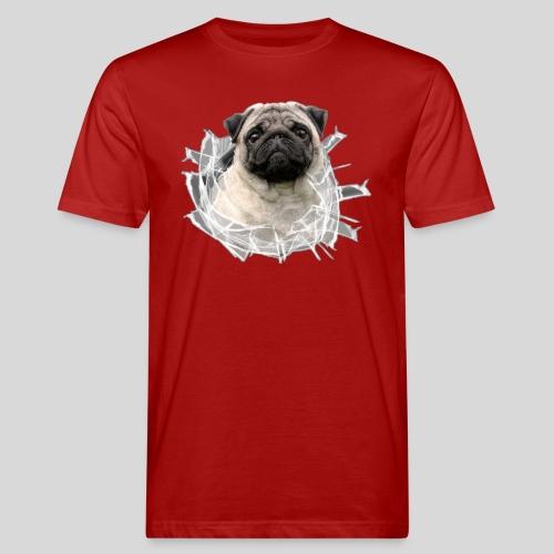 Mops Beige im Glasloch - Männer Bio-T-Shirt