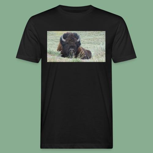 Bison - T-shirt bio Homme