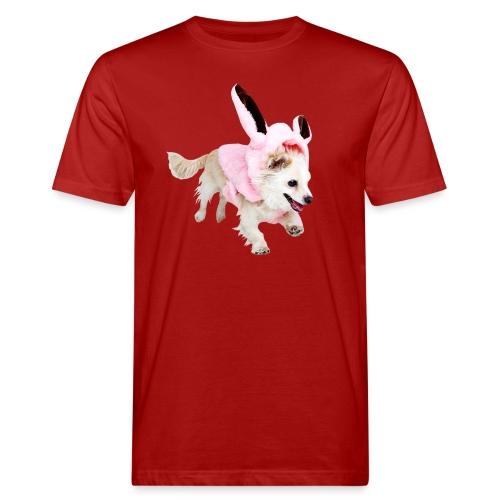 Glaube und Wahrheit - Hund, Hase, Dio - Männer Bio-T-Shirt
