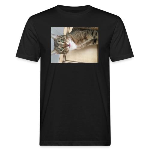 Kotek - Ekologiczna koszulka męska