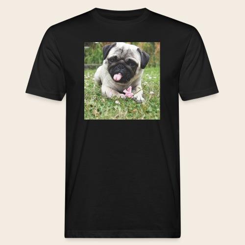 Mops Wiese - Männer Bio-T-Shirt