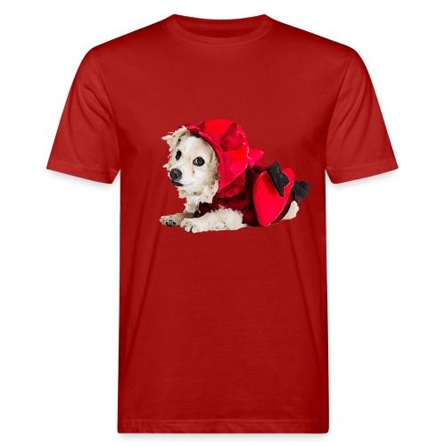 Glaube und Wahrheit- Amor zum Valentinstag - Männer Bio-T-Shirt