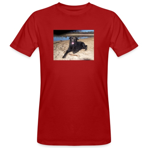 Käseköter - Men's Organic T-Shirt