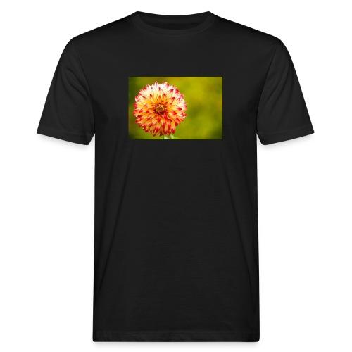 Blomst - Organic mænd