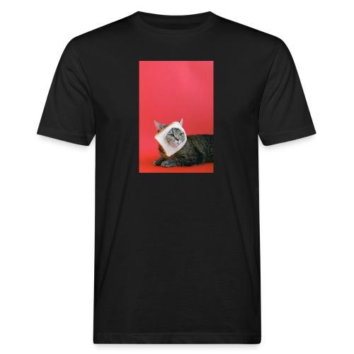 cute cat - Camiseta ecológica hombre