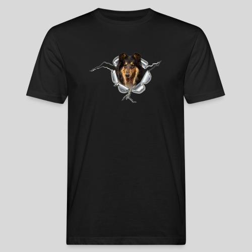 Collie Blue Merle im Metall-Loch - Männer Bio-T-Shirt