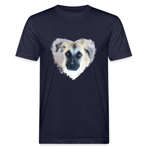 Ciqala - Ein Herz für Streuner - Männer Bio-T-Shirt