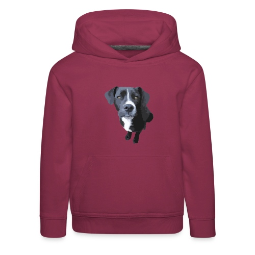 Johnny Staffy - Kinder Premium Hoodie